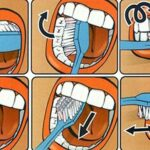 Proper care of oral cavity and brushing technique